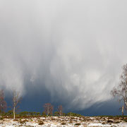 Sneeuwbui boven Deelerwoud