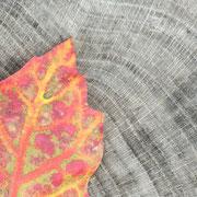 Eikenblad op boomstam