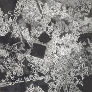 Estudio-01 -  Acrilico y esmalye sobre tela 50cm X 50cm