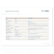 MunicOne · Corporate-Design-Entwicklung · PowerPoint Präsentation