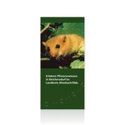 Erlebnis Pfistererwiesen · Informations- und Wanderflyer