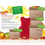 Bears&Friends Hannover · Konzeption mecom marketing · Gestaltung Atelier Kaspar
