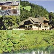 Hotel-Gasthof Ochsenwirtshof - Schapbach
