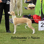 his brother Sylvianne´s Naxos, placed 2..... both are beautiful