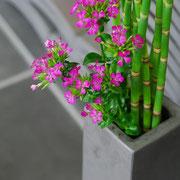 角柱花器。