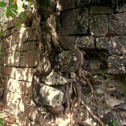 Altes Gemäuer auf Fort Duvernette