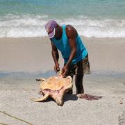 Schildkröten sollen sehr schmackhaft sein, bleiben jedoch den Fischern vorbehalten.
