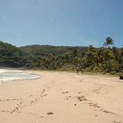 Einsam und riesig, der Strand in der Hope-Bay
