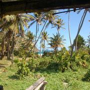 Blick von der rrasse des Farmhauses