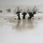 Drei Weiden  10 x 15 cm
