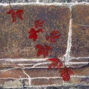 autumn colours 13 x 18 cm