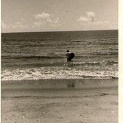 いちき串木野照島海岸・この頃のサーファー?はBOSSの一人のみ。
