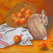 Canel et le panier aux abricots - Pastel sec sur pastelmat