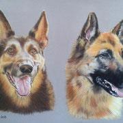 Wolf et Shana - Pastel sec sur pastelmat  - Vendu
