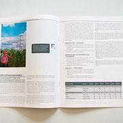 Portfolio Dorina Rundel - Grafikdesignerin: Netzentwicklungsplan - Coporate Publishing 4