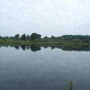 Les étangs de Picquigny