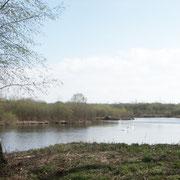 Le grand étang de Picquigny.