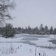 Les étangs de Picquigny sous la neige.