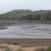 Queue de l'étang de Miel à Beynat