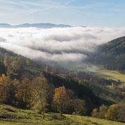 Blick vom Mitterberg Richtung Trofaiach