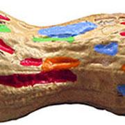 """""""american peanut"""" segni di acrilico su nocciolina (lungh. cm 4,5)"""