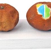 """""""mandaranci (4)""""acrilici sumandaranci secchi cm28,5x8x6"""