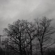 四月なのにまだ寒い、今日はどんより小雨