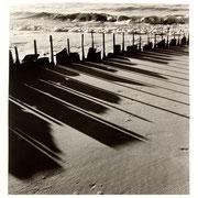 Reste mit Schatten, Sylt 1954