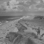 Nach Hause,  Kampen 1955