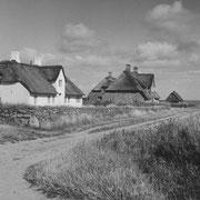 Lieblingsmotiv, Kampen 1948