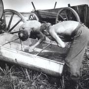 Erfrischung,Wensin 1944