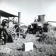 Rapsernte, Wensin 1944