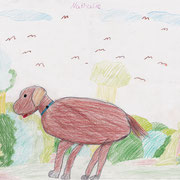 Hund im Geiseltalurwald, Nathalie - Buntstift und Bleistift auf Papier, 2018