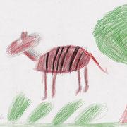 Urpferdchen vom Geiseltal, John - Buntstift und Bleistift auf Papier. 2018