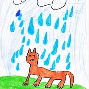 Fuchs im Regen, Laila - Filzstift, Buntstift auf Papier, 2019
