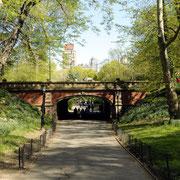 Einer der beliebtesten Drehorte im Central Park ist diese kleine Brücke.
