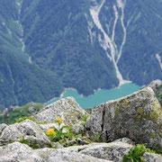 2011年8月_大汝山黒部湖を背景に