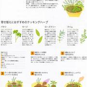日経BP「ecomom」 2006_3月号