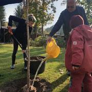 Lotta, hier im Einsatz bei der Pflanzung von Bäumen, wovon zwei Kindern gewidmet wurden