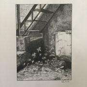 Clotilde CAUCHOIS-PESSIN