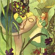 Марджори Тори, 1955г.
