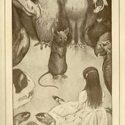 Питер Ньюэлл, 1905г.