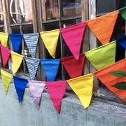 Banderines Lisos Colores/ REF: TEX- 021/ 9 unidades / Arriendo: $ 2.500 c/u / Garantía: $ 18.000