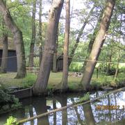 Die Wapel an Beckhoffs Mühle