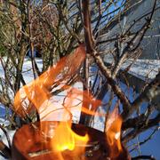 Nick, 5b: der brennende Dornbusch