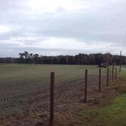 So fing alles an - Ende 2013 - Pfosten setzen - das Saatgut ist erst einige Wochen im Boden - vorher war hier Ackerland