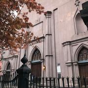 向かいは教会。ザ・バシリカ・オブ・セント・パトリックス・オールド大聖堂。