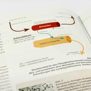 Magazin Illustrationen im Auftrag vom 8hdirekt