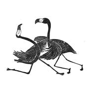 'The dancing flamingos'. Linosnede.