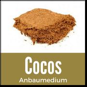 Cocos für Cannabis